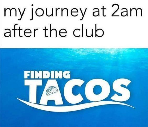 1503841731_398_most funny quotes 27 taco memes for taco tuesday or any day most funny quotes 27 taco memes for taco tuesday or any day