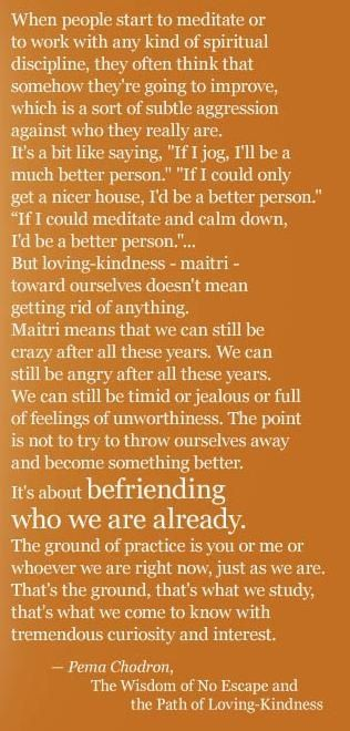 Pema Chodron Quotes Classy Best Positive Quotes  Pemachodronquotes  Pema Chodron Quote