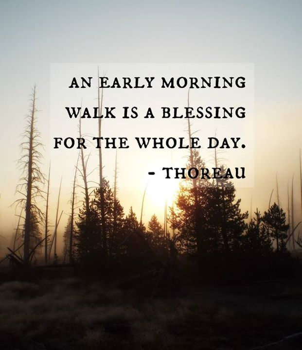 Early Morning Blessing Quotes: Positive Quotes : An Early Morning Walk Is A Blessing For