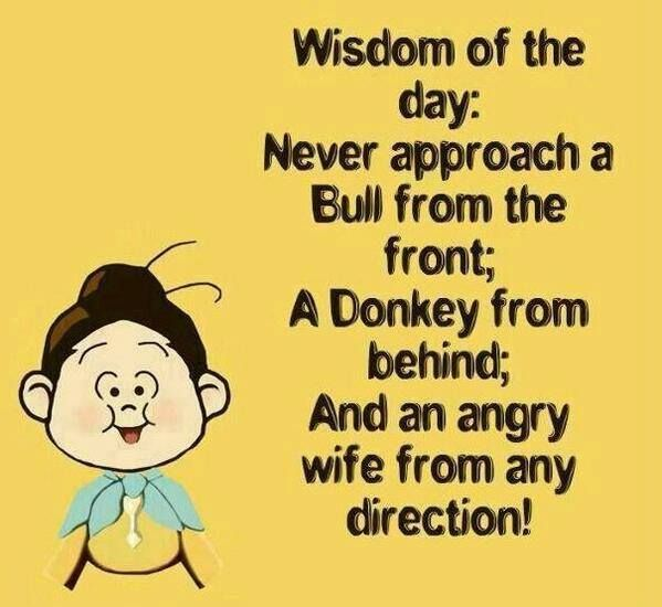 Most Funny Quotes : Wisdom of the day... - Quotes Boxes ...