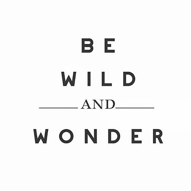 Positive Quotes Be Wild And Wonder Quote Quotes Boxes You Gorgeous Wonder Quotes