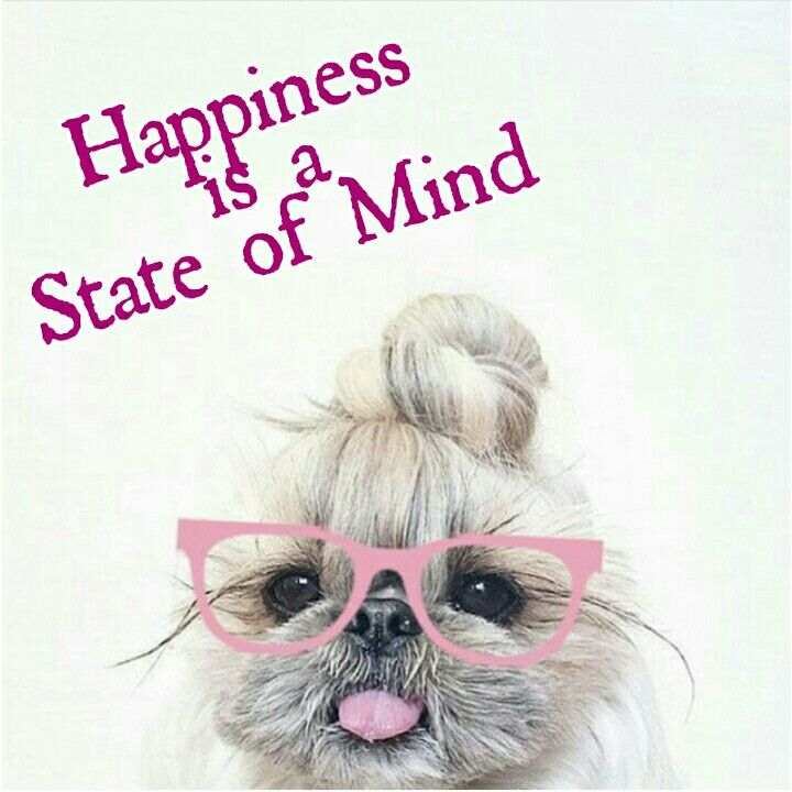 Positive Quotes Happiness Is A State Of Mind Quotes Boxes