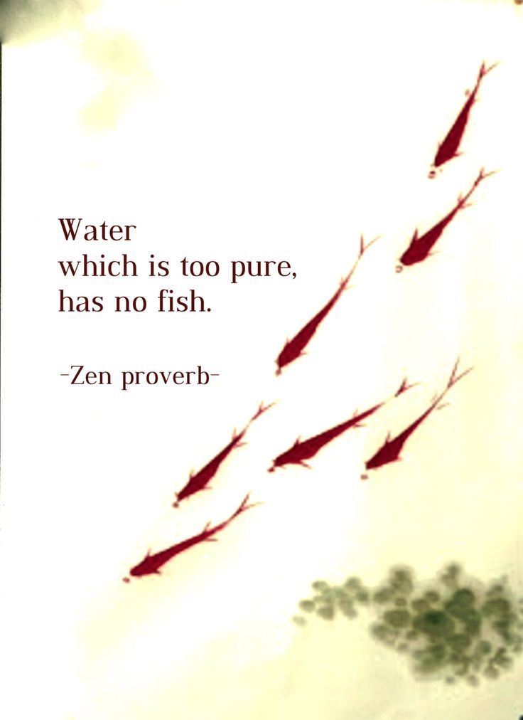 Best Positive Quotes Draw Wings Water Which Is Too Pure Has