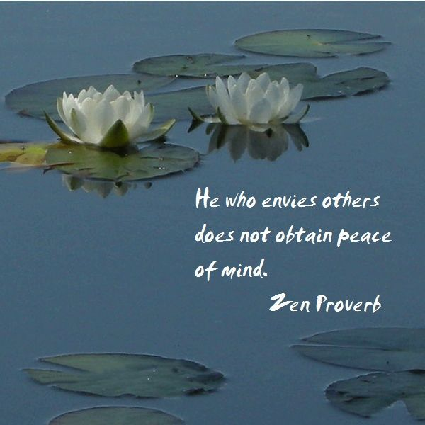 Best Positive Quotes He Who Envies Others Does Not Obtain Peace Of