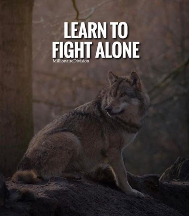 Positive Quotes Learn To Fight Alonejpg Quotes Boxes You Number