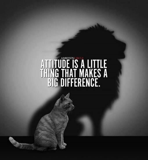 Positive Quotes : Attitude Is A Little Thing That Makes A