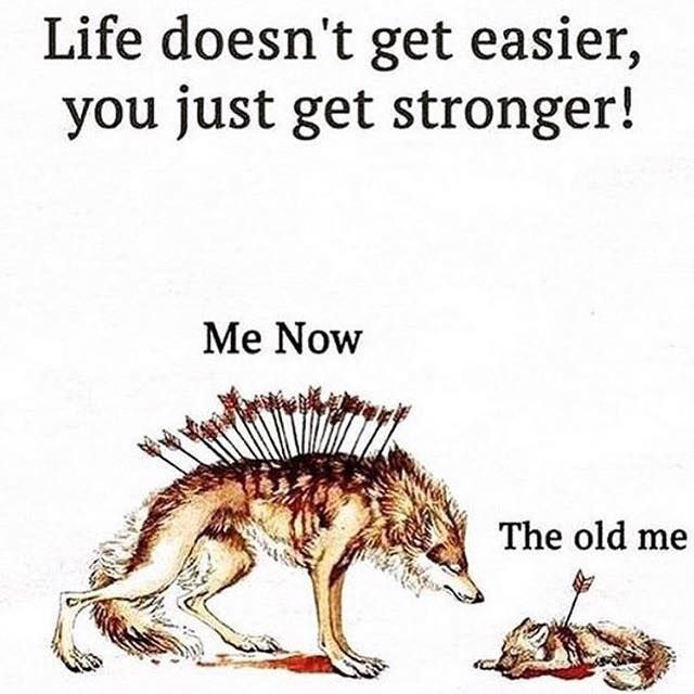 Positive Quotes Life Doesn't Get Easier You Just Get Stronger Impressive Positive Quotations About Life