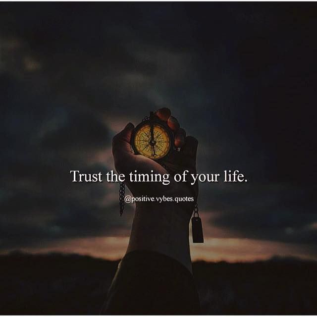 The Best Trust The Timing Of Your Life Quote