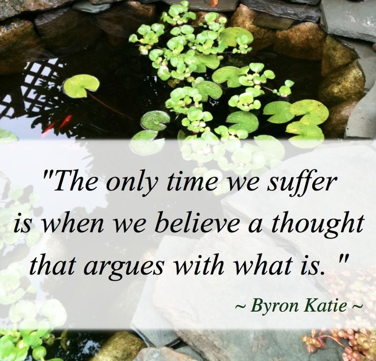 Byron Katie Quotes Stunning Best Positive Quotes  Byron Katie Quotes  Quotes Boxes  You