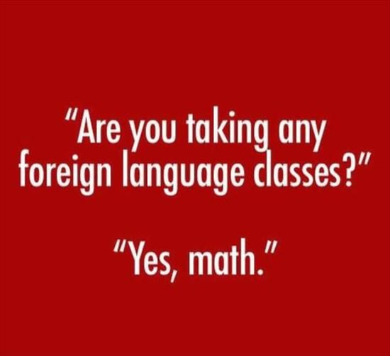 Most Funny Quotes Funny Foreign Languages Math Quotes Boxes