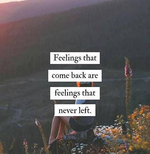 Positive Quotes Feelings That Come Back Are Feelings That Never