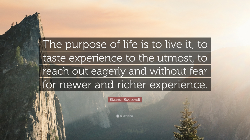 Purpose Of Life Quotes New Quotes About Life  37 Purpose Driven Life Quotes  You Had A