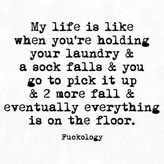 Most Funny Quotes 22 Snarky And Funny Quotes For Anyone About Life