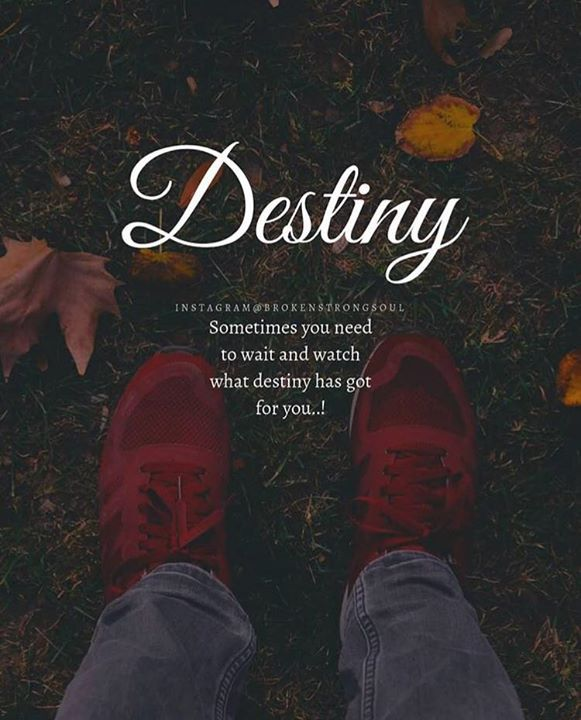 Destiny Quotes | Positive Quotes Destiny Quotes Boxes You Number One Source