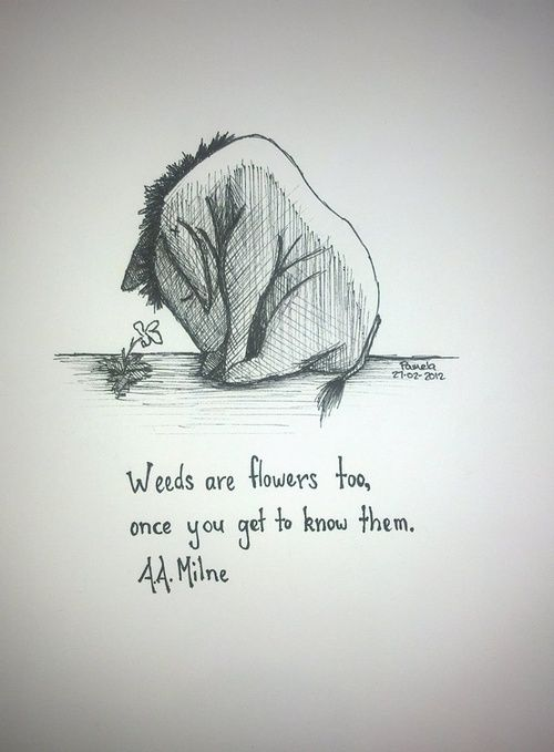 Quotes About Life Love And Lost Quote Eeyore Quotes Boxes You